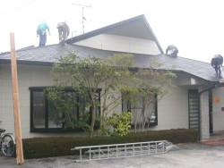2009325a.jpg