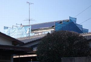 20100311c.jpg